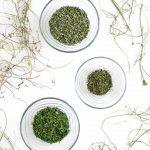 homegrown dried oregano, parsley, tarragon in small bowls