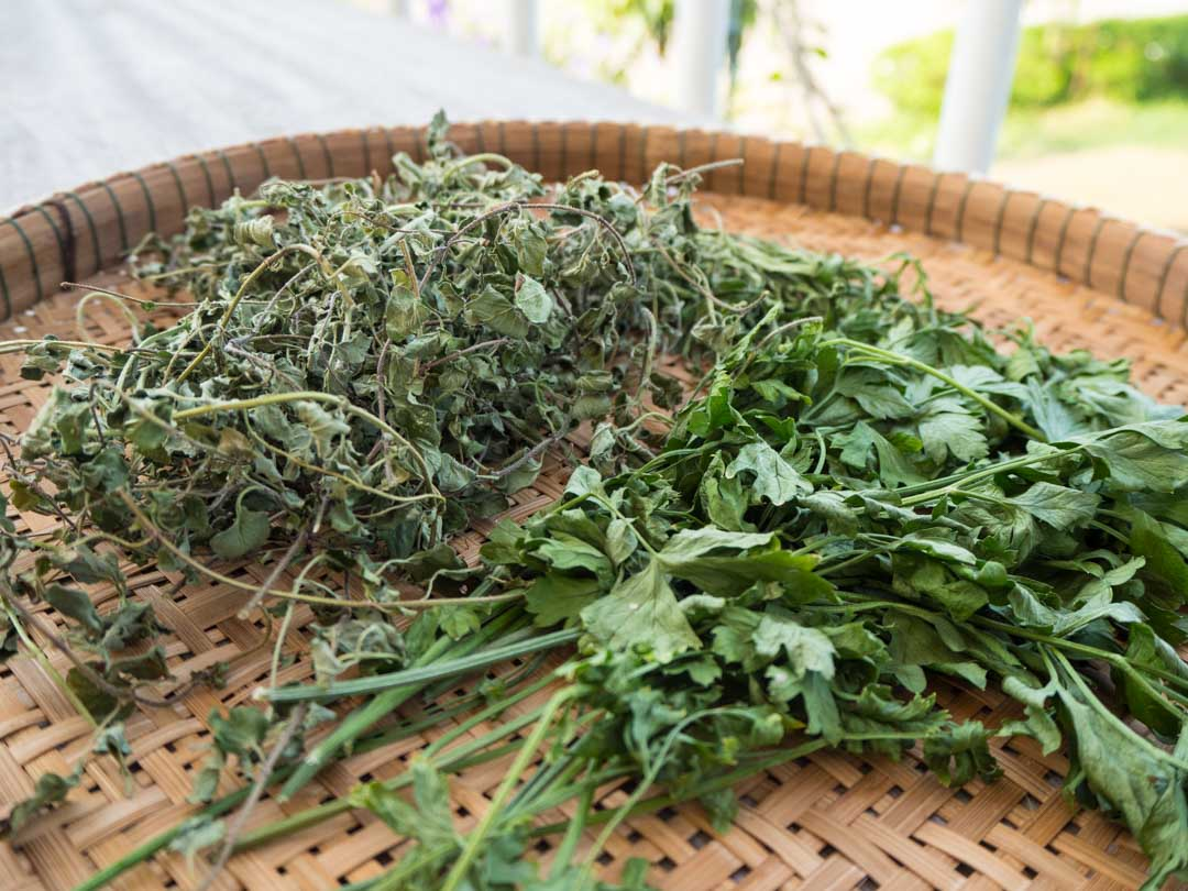homegrown dried oregano, parsley, tarragon
