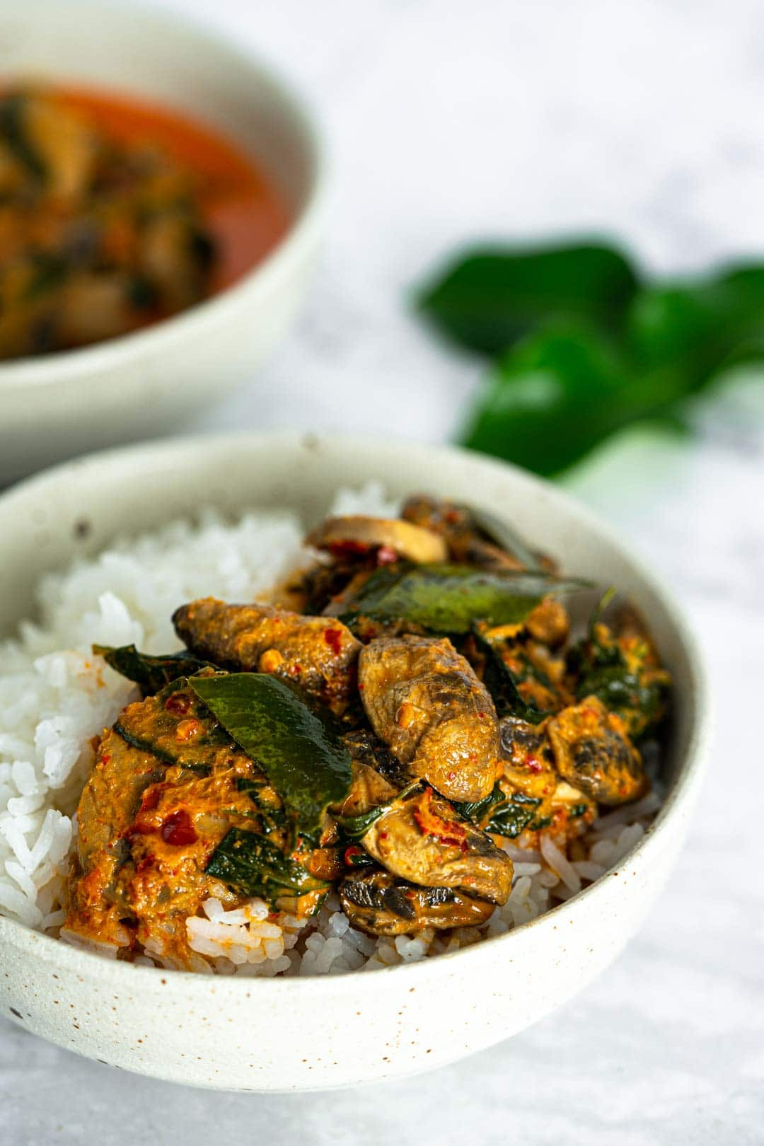 a bowl of rice topped with vegan mushroom curry