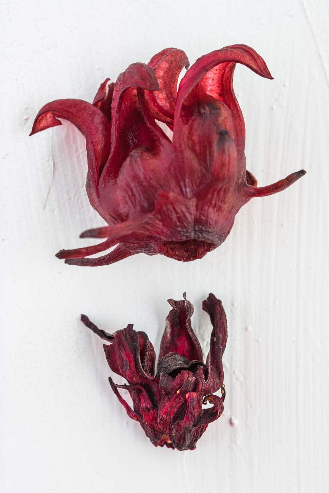 the comparison between the sizes of a cooked roselle flower and a dried roselle flower